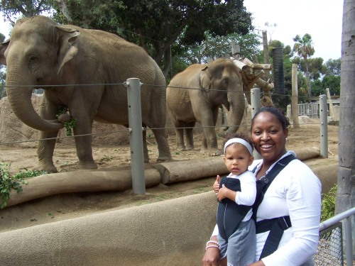For Caroline! You know we couldn't forget the Elephants!